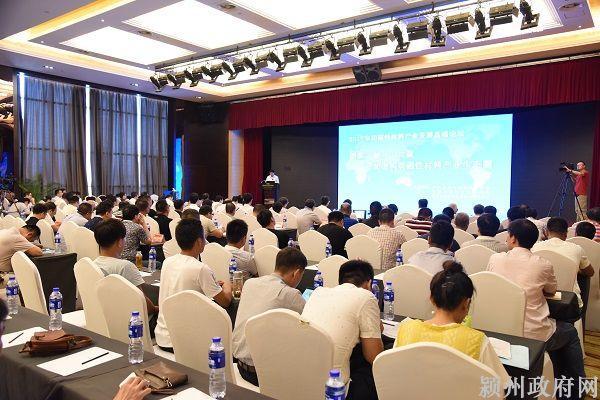 颍州区召开磁性材料产业发展高端论坛
